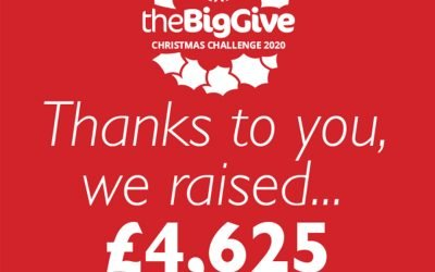 The Big Give Christmas Challenge 2020
